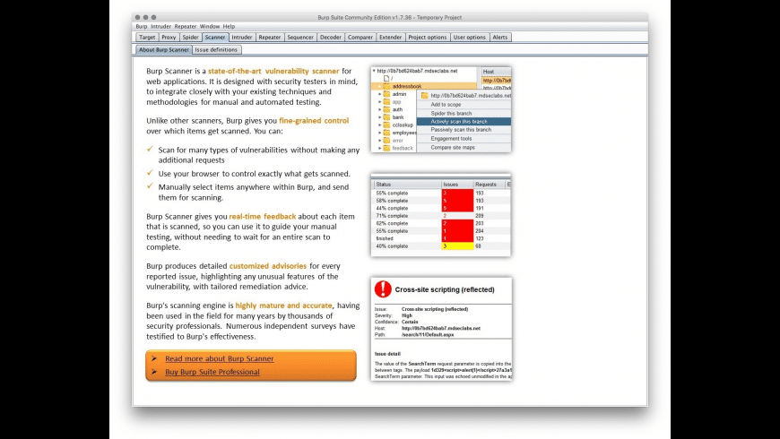 Burp Suite for Mac - review, screenshots
