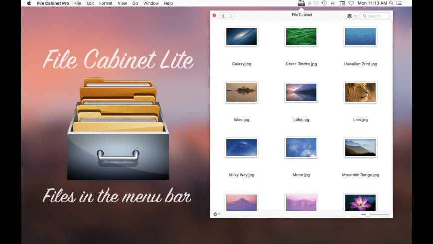 File Cabinet Lite for Mac - review, screenshots