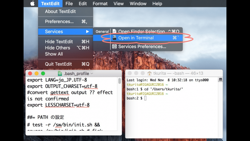 Open in Terminal for Mac - review, screenshots