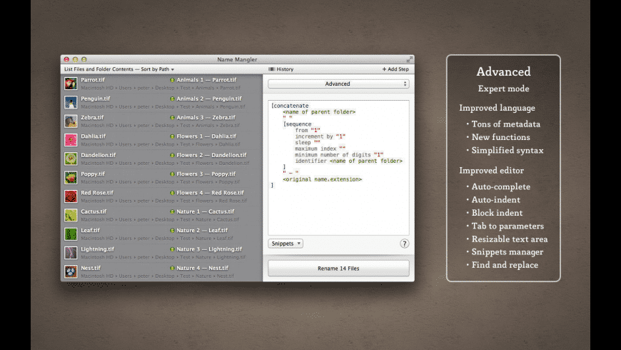 Name Mangler for Mac - review, screenshots
