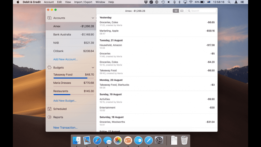 Debit & Credit for Mac - review, screenshots