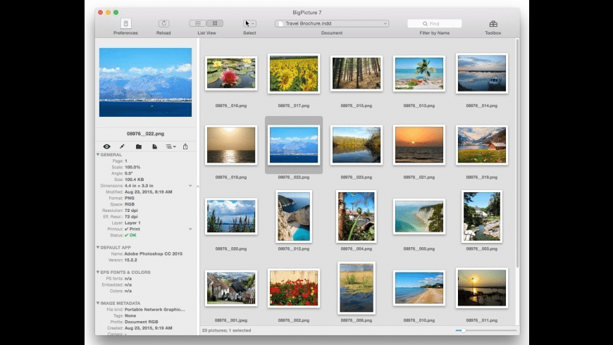 Badia BigPicture for QuarkXPress for Mac - review, screenshots