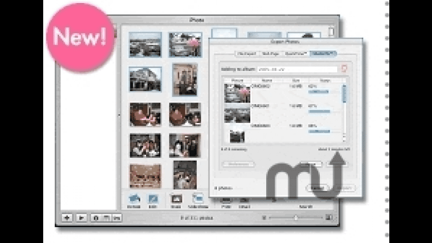 Shutterfly Export Assistant for iPhoto for Mac - review, screenshots