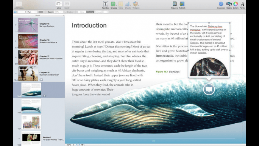 Apple iBooks Author for Mac - review, screenshots