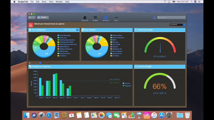 BudgetTail for Mac - review, screenshots
