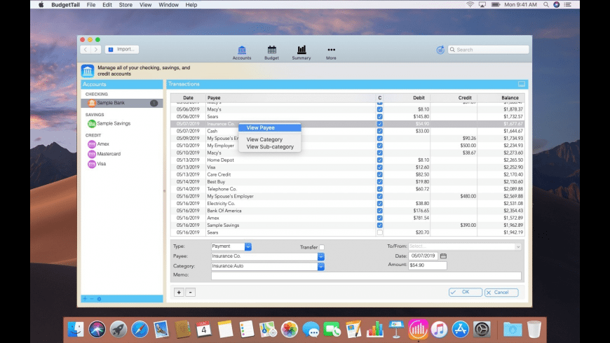 BudgetTail for Mac - review, screenshots