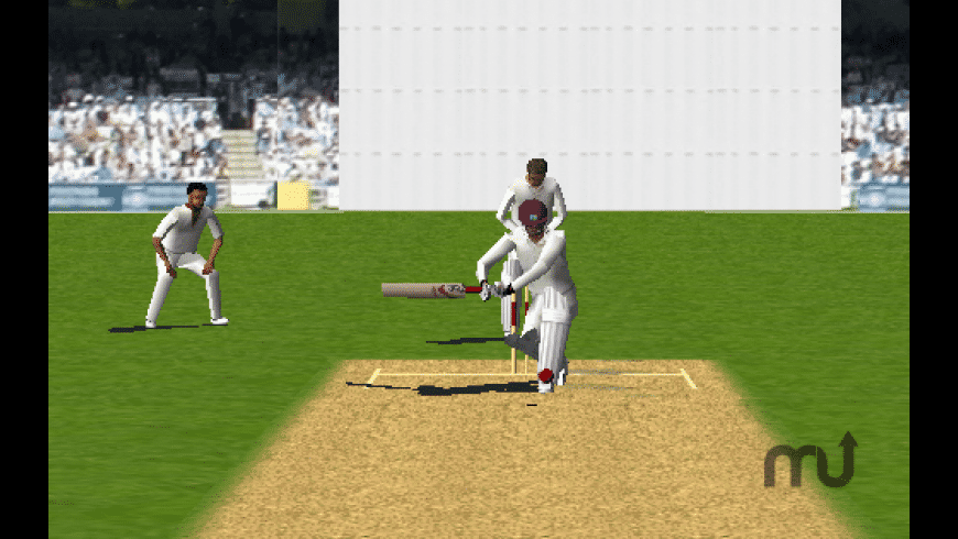 Cricket 3D for Mac - review, screenshots