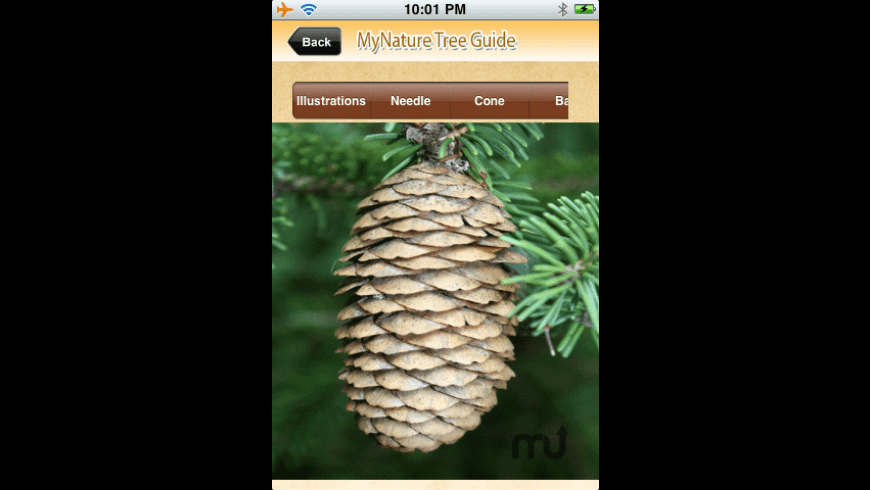 MyNature Tree Guide for Mac - review, screenshots