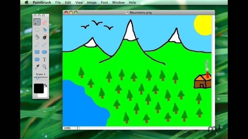 Paintbrush for Mac - review, screenshots
