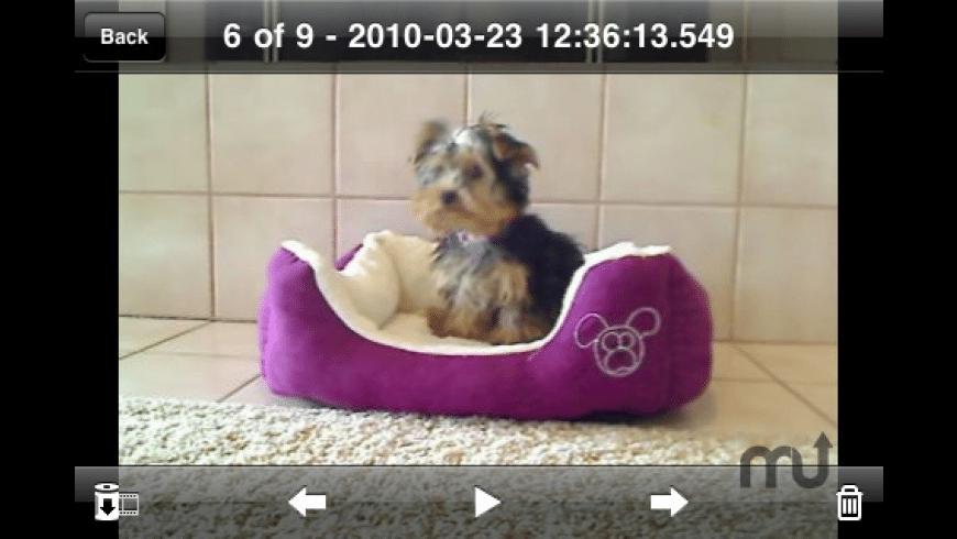 iCam (Webcam Video Streaming) for Mac - review, screenshots