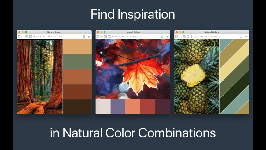 Color Palette from Image for Mac - review, screenshots