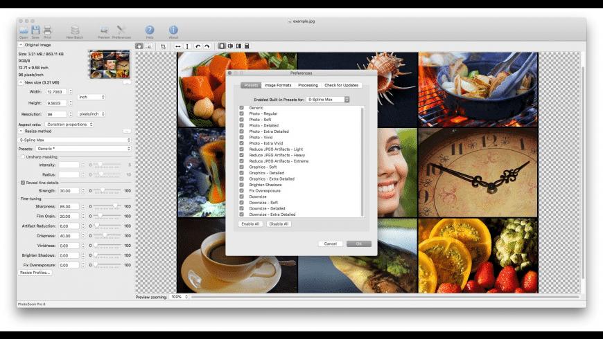 PhotoZoom Pro for Mac - review, screenshots
