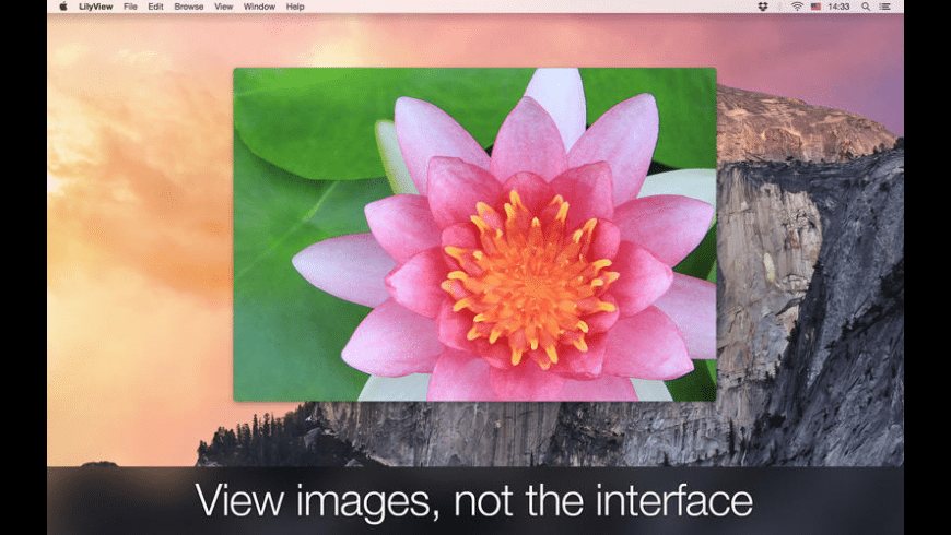 LilyView for Mac - review, screenshots