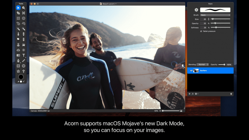 Acorn for Mac - review, screenshots