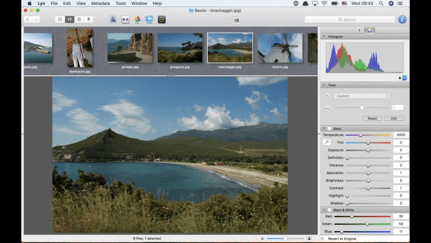 Lyn for Mac - review, screenshots