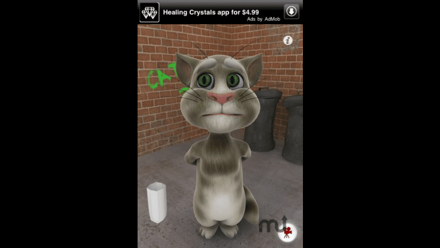 Talking Tom Cat for Mac - review, screenshots