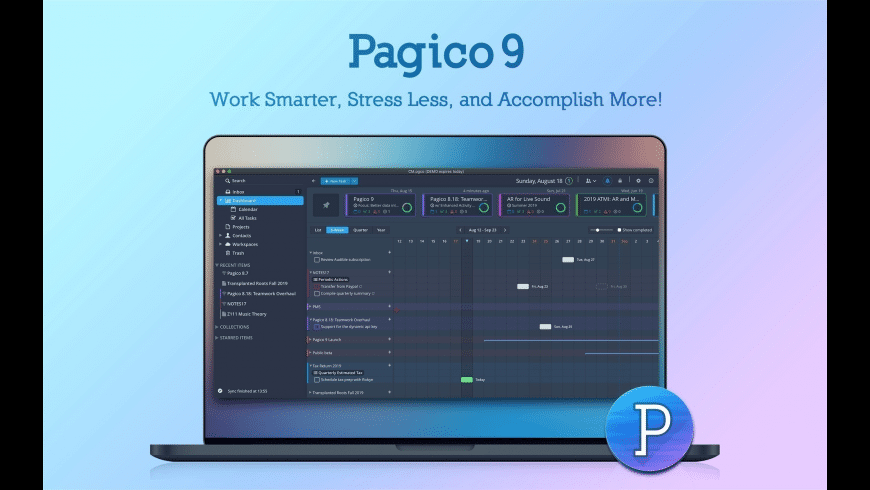 Pagico for Mac - review, screenshots
