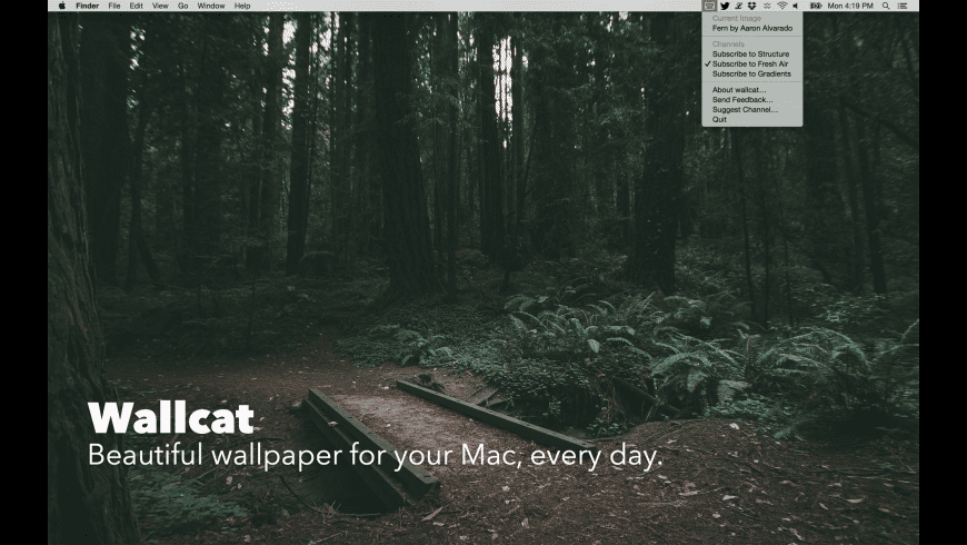 Wallcat for Mac - review, screenshots