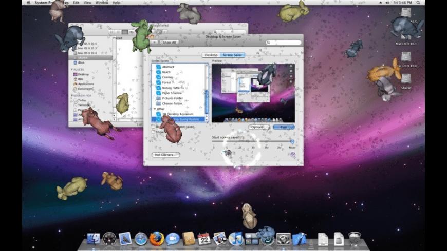 3D Desktop Bunny Rabbits for Mac - review, screenshots
