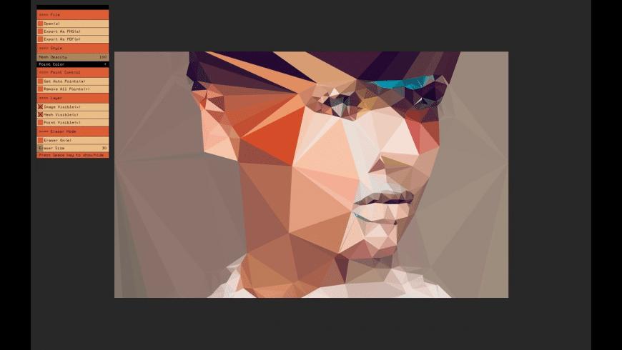 DMesh for Mac - review, screenshots
