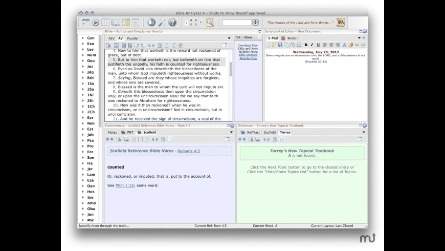 Bible Analyzer for Mac - review, screenshots