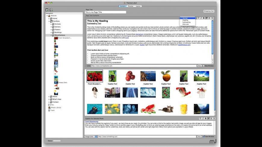 ShutterBug for Mac - review, screenshots