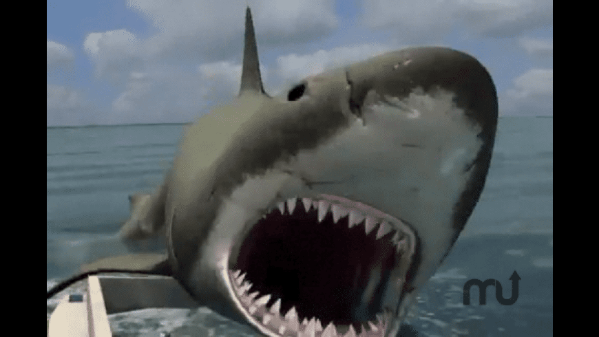 Jaws for Mac - review, screenshots