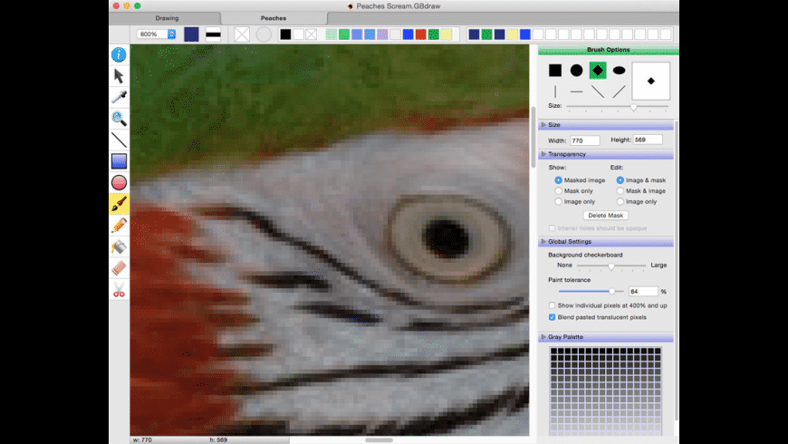 Growly Draw for Mac - review, screenshots