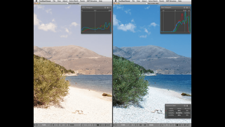FastRawViewer for Mac - review, screenshots