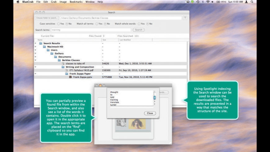Blue Crab for Mac - review, screenshots