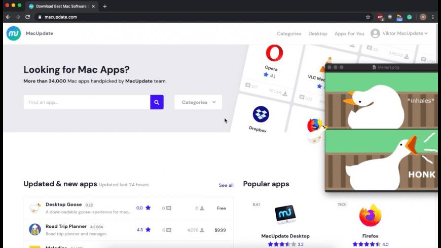 Desktop Goose for Mac - review, screenshots