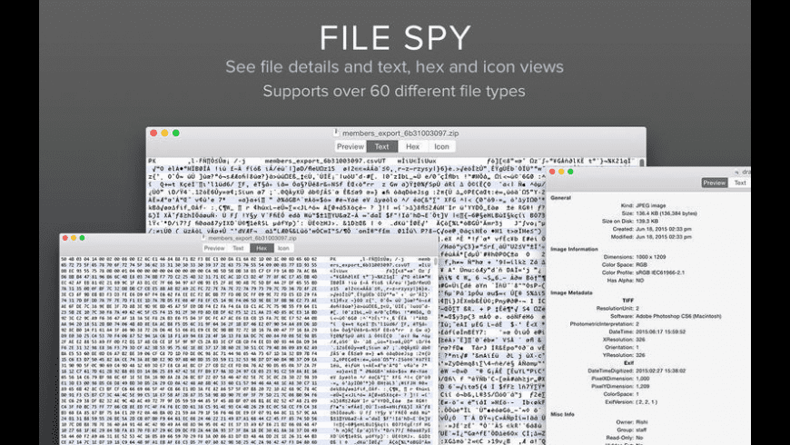 File Spy for Mac - review, screenshots