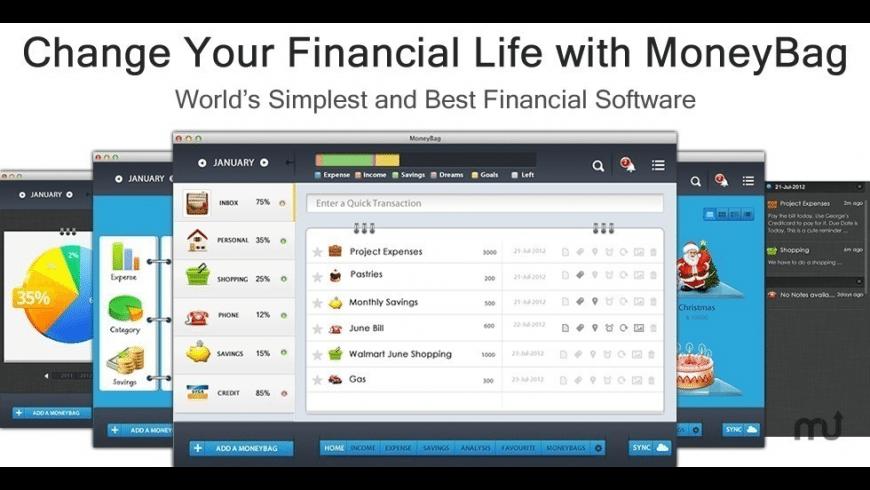 MoneyBag for Mac - review, screenshots