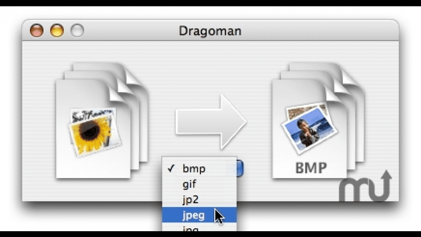 Dragoman for Mac - review, screenshots