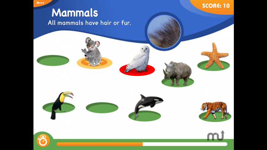 Animal Genius for Mac - review, screenshots
