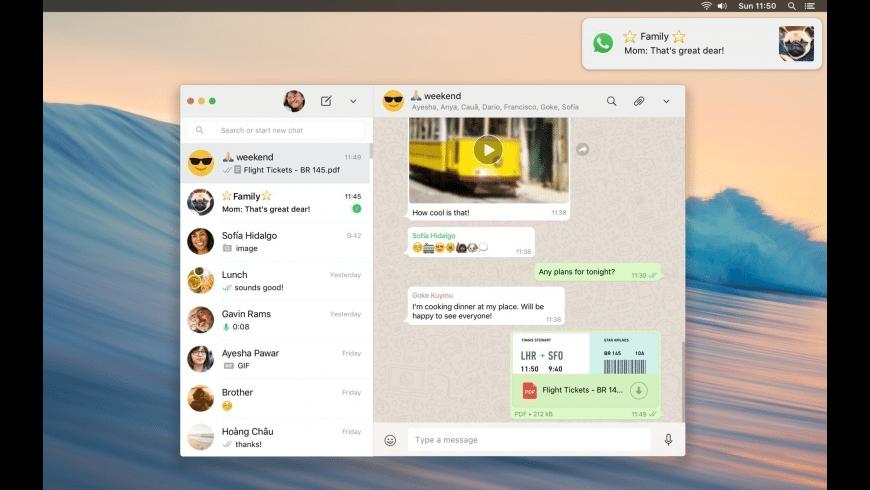 WhatsApp for Mac - review, screenshots