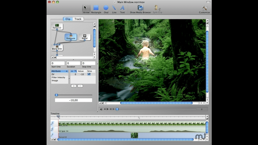 VideoCanvas for Mac - review, screenshots