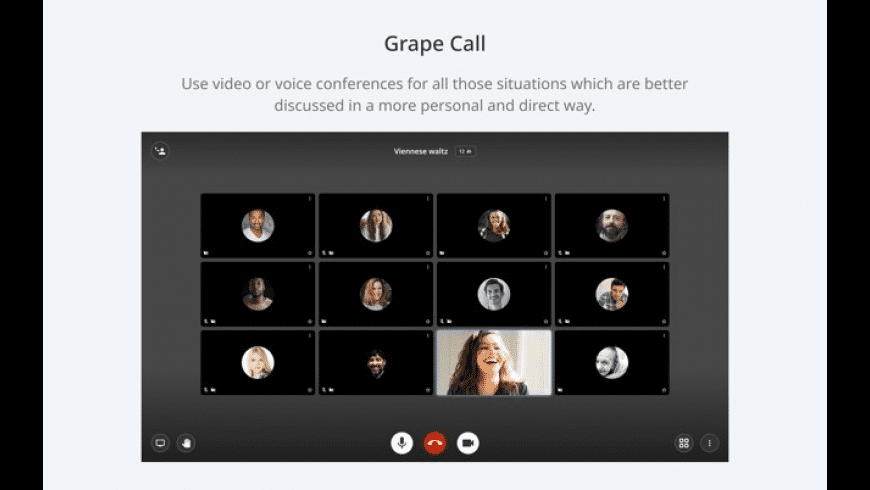 Grape for Mac - review, screenshots