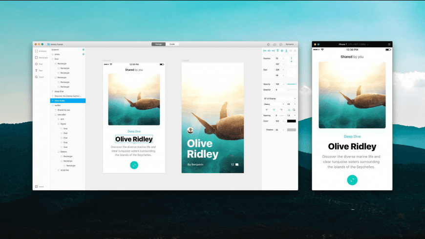 Framer for Mac - review, screenshots