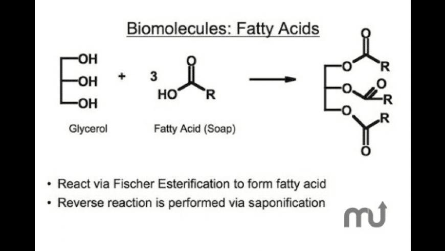 Organic Chemistry Essentials for Mac - review, screenshots