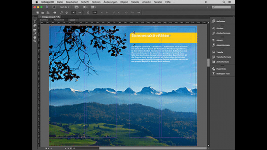 Adobe InCopy for Mac - review, screenshots