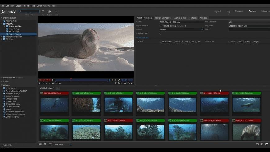 CatDV Pro for Mac - review, screenshots