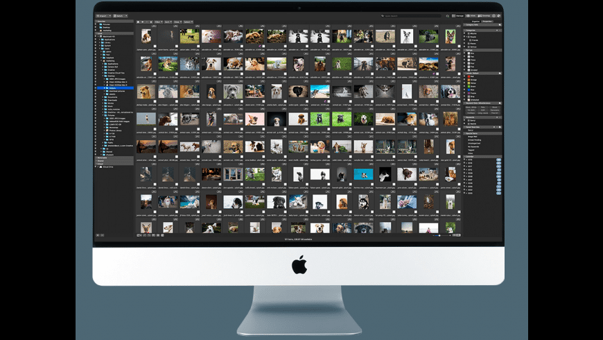 ACDSee Photo Studio for Mac - review, screenshots