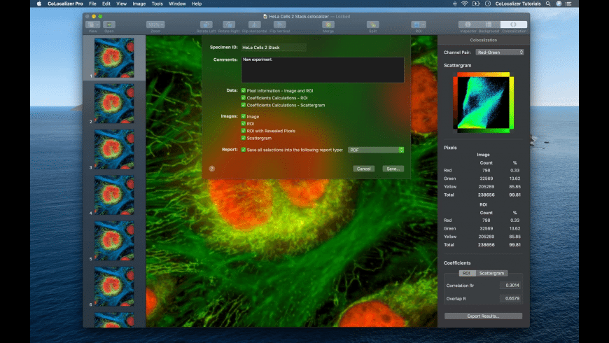 CoLocalizer Pro for Mac - review, screenshots