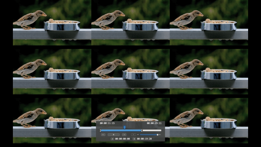 VScenePlayerLite for Mac - review, screenshots