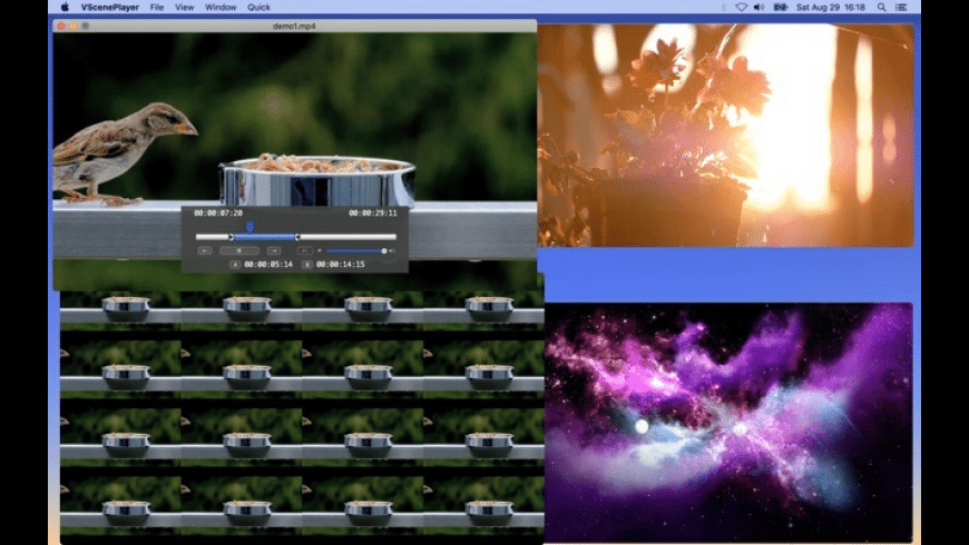 VScenePlayer for Mac - review, screenshots