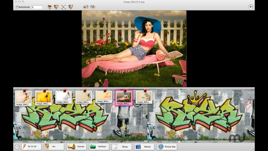 PinUpGirls for Mac - review, screenshots
