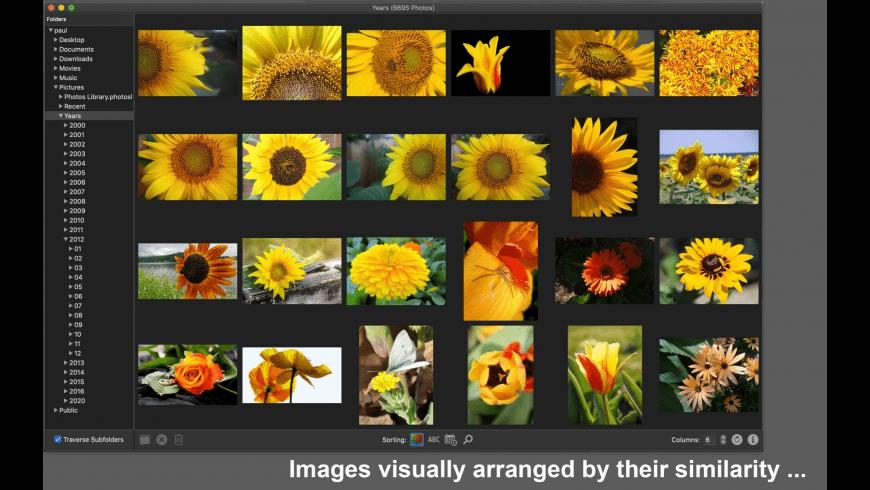 PicArrange for Mac - review, screenshots