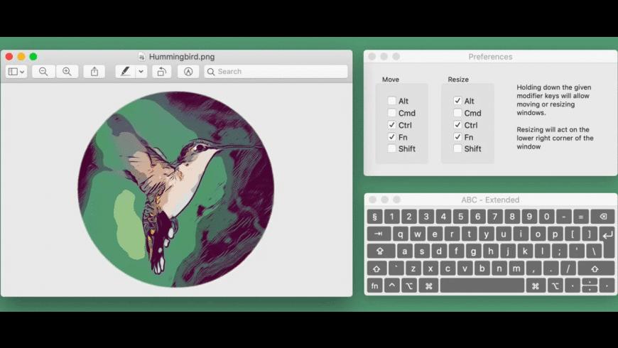 Hummingbird for Mac - review, screenshots