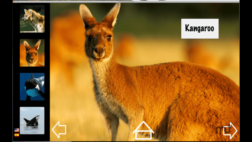 Let's Hear the Animals! HD for Mac - review, screenshots